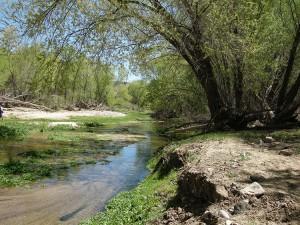 Verde River field trip.